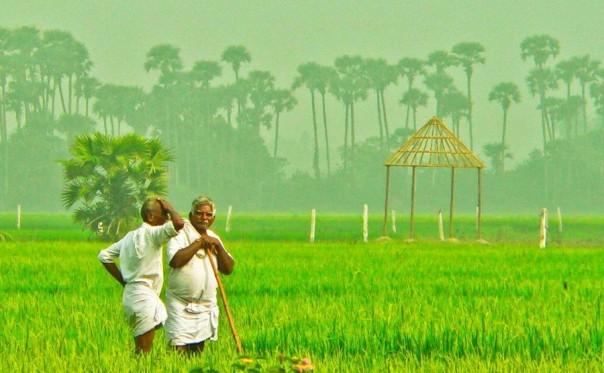 Potash in India