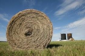straw bail