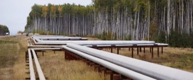 oil processing pipe